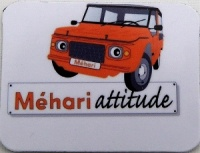 Mini magnet Méhari orange